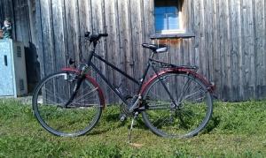 Tafel 2: Damenrad