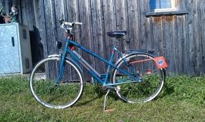 Tafel 3: Jugendrad, wohlproportioniert
